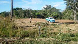 PMA autua dono de chácara por desmatamento ilegal em Bonito