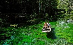 Conheça um dos rios mais transparentes do planeta localizado em Bonito MS