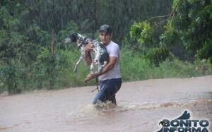 Confira algumas FOTOS dos alagamentos provacados pelas chuvas em BONITO (MS)