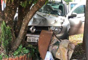 Homem morre após ser esfaqueado e bater carro contra árvore