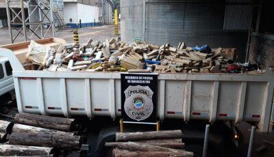 Polícia Civil incinera mais de 5 toneladas de drogas apreendidas em Maracaju