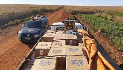 Polícia apreende caminhão com 10 mil pacotes de cigarros contrabandeados