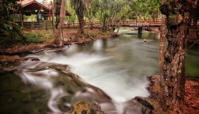 IDB INFORMA: quer fazer várias atividades em um só lugar? Conheça o Eco Park Porto da Ilha