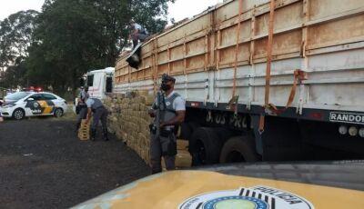 Quase três toneladas de maconha que saiu de MS são apreendidas em São Paulo