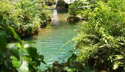 Passeio no Rio da Prata: Saiba tudo sobre o Rio da Prata!