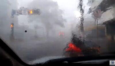 VÍDEO: Árvore cai durante vendaval em avenida central que deixou estragos em Dourados