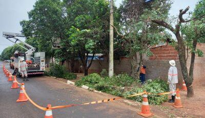 Bonito recebe serviços e ações de melhoria na rede elétrica