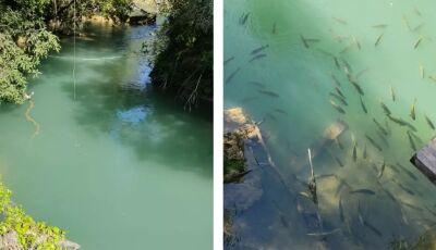 SEMA emite nota de esclarecimento sobre turbidez da água do Rio Formoso em Bonito (MS)