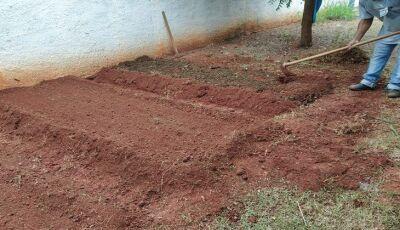 Como forma de incentivar novos hábitos, presídio de Jardim contribui no cultivo de horta em creche