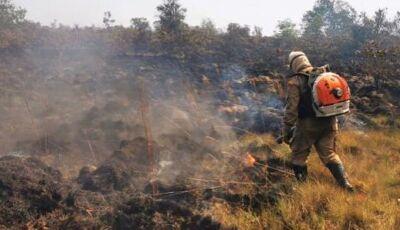 'Não existem mais incêndios florestais em Bonito e região', diz Corpo de Bombeiros