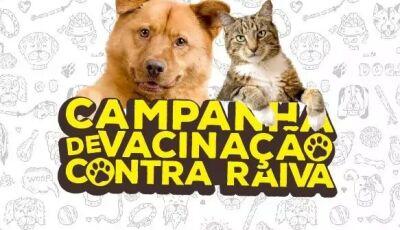 Confira os pontos de vacinação do seu melhor 'Aumigo' neste sábado em Bonito (MS)