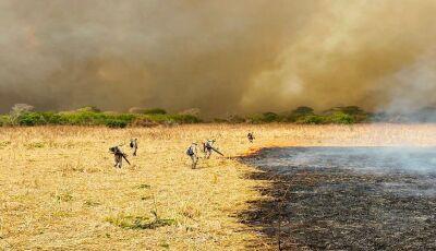 Combate aos incêndios no Pantanal mobiliza 510 homens e 06 aeronaves