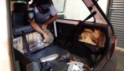 Sul-mato-grossense é preso com maconha no interior de São Paulo