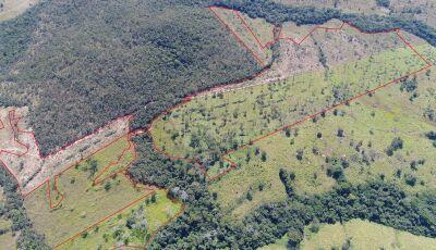 BONITO: PMA autua fazendeiro em R$ 27 mil por desmatamento ilegal de 27 hectares de vegetação nativa