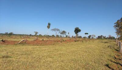 PMA autua fazendeiro em R$ 9,8 mil por desmatamento ilegal de duas áreas em Guia Lopes