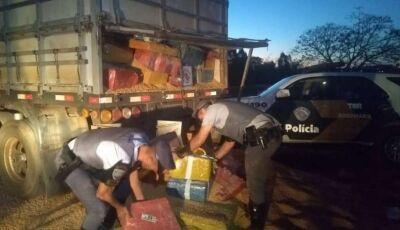 Polícia acha 4 ton de maconha sob milho, motorista ganharia R$ 20 mil