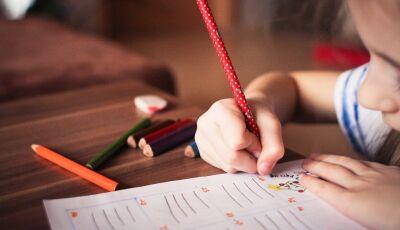 STF considera ilegal prática do ensino domiciliar no País
