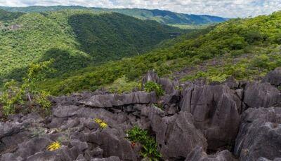 Bonito Cross define trilhas com promessa de surpresas e aventuras em Bonito (MS)