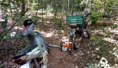 PMA autua infratores em R$ 26 mil por furto de madeira e uso de motosserra ilegal em área protegida