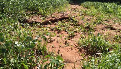 PMA autua infrator em R$ 20,7 mil por realização de atividade agrícola sem conservação de solo