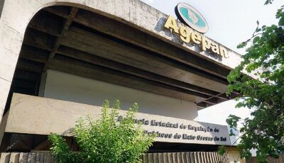 Agepan vai checar procedência de reclamações sobre aumento da fatura de energia elétrica