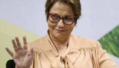Mato Grosso do Sul ganha  destaque no governo Bolsonaro