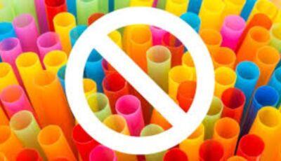Projeto de Lei quer banir os canudos de plástico em Bonito (MS)