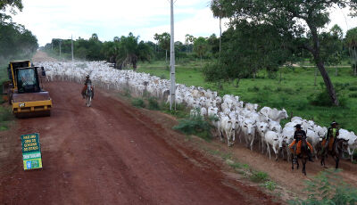 Estado inicia cascalhamento de mais uma estrada implantada no Pantanal