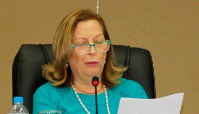 Lúcia Miranda pede realização de obras de tapa buracos em toda área necessária em Bonito (MS)