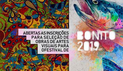 Abertas as inscrições para seleção de obras de artes visuais para o Festival de Bonito 2019