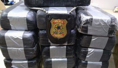 Cão fareja 17 quilos de cocaína em bagagem e boliviana é presa em ônibus que seguia de MS para SP