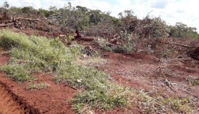 Idoso é autuado em R$ 15 mil por degradar área ambiental em MARACAJU