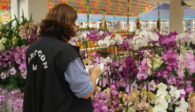 Procon Estadual realiza pesquisa de produtos para o Dia das Mães e encontra variação de até 200%