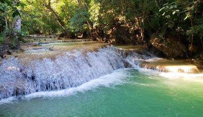 Unidos Conservamos divulga NOTA sobre Liminar da Justiça Federal tira 80% da área do Parque da Serra