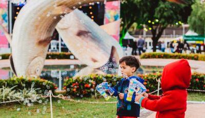 Na praça que recebe o mundo, Festival de Inverno de Bonito apresenta sua essência