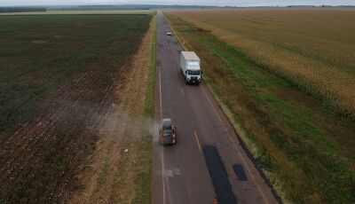 Governo do Estado aprova Projeto de Concessão da Rodovia MS-306