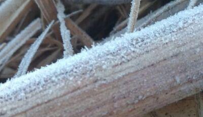 Bonito e mais 09 cidades do MS com madrugada fria marcada com geada