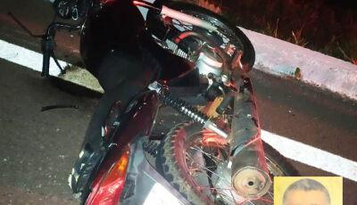 Homem morre após colidir moto contra tamanduás em rodovia