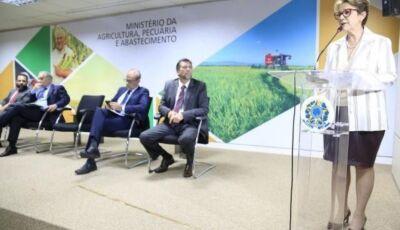 Tereza Cristina reúne ministros da Agricultura do Brics nos dias 25 e 26 em Bonito (MS)