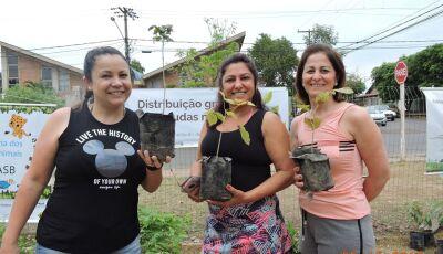 Em Bonito (MS), manhã deste sábado foi marcada por muitas doações de mudas, VEJA FOTOS