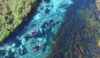 ESPECIAL IDB: que tal flutuar na terceira água mais cristalina do mundo? Conheça a Barra do Sucuri