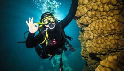 ESPECIAL IDB: que tal fazer um mergulho em águas cristalinas? Conheça o Bonito Scuba