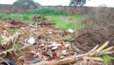 Com multa de mais de R$ 5 mil, Prefeitura e MP notificam proprietários de terrenos sujos em Bonito