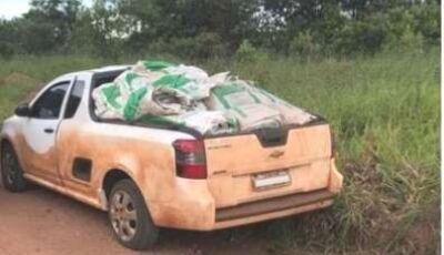 Agricultor é multado em R$ 50 mil por contrabando de agrotóxicos
