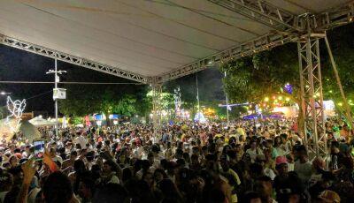 Show da virada tem recorde de público que aplaude no final do show pirotécnico em Bonito (MS)