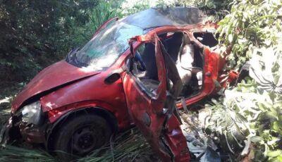 Motorista bêbado bate em árvore e morre às margens de rodovia