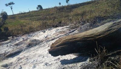 PMA autua infrator em R$ 70 mil por incêndio para renovação pastagem em Bonito (MS)