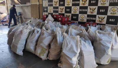 Polícia apreende mais de 3 toneladas de maconha e fecha entreposto do tráfico