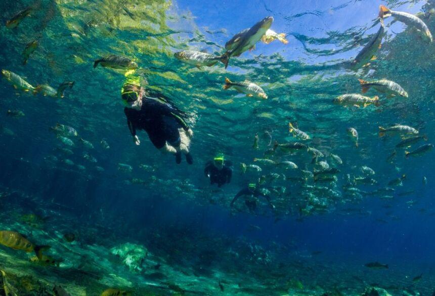 Flutuação no Recanto Ecológico rio da Prata. Foto: Daniel De Granville.