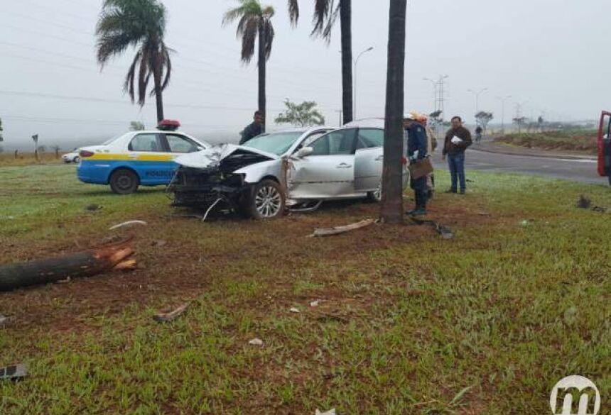 Carro chegou a derrubar um coqueiro (Foto: Arlindo Florentino)